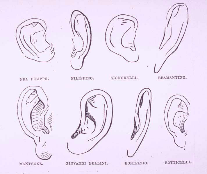 Morelli's drawings of 'Typical Ears' after various Masters.