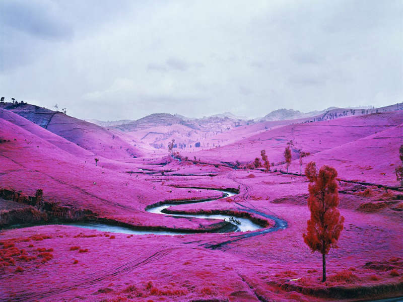 Richard Mosse The Enclave